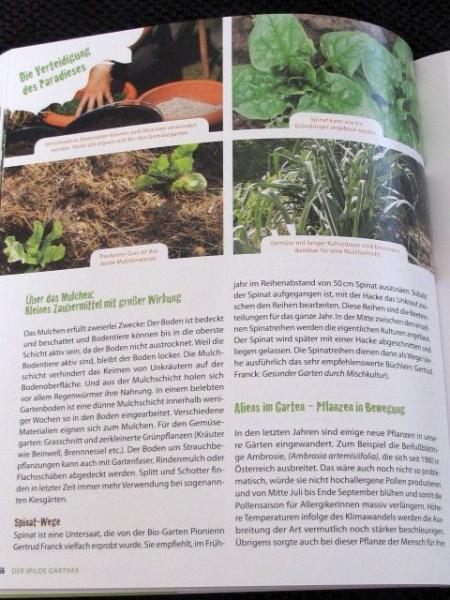 Atemberaubend Gärtner Beispiel Ideen - Dokumentationsvorlage ...